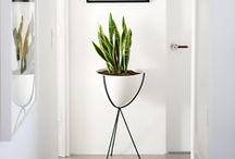 Vases/Pots