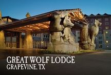 Grapevine, TX | Great Wolf Lodge / Pin your favorite activities to your own board and start picturing your Great Wolf Lodge Grapevine getaway!