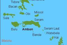 Inspiraties voor 2016 / Bali & Ambon