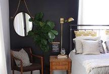 Interior / Interior, design, interior design, teak, scandinavian style, scandinavian, nordic, coloured wall, minimalistic, beautiful, inspiration, interior inspiration, small apartment, dream house, urban jungle,