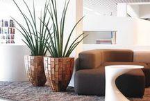 Interieurbeplanting / Interieurbeplanting   planten   kantoorinrichting   hydrocultuur