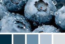 Color Jamie AL