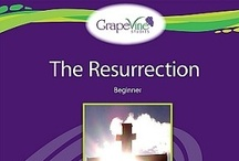Resurrection / by Grapevine Studies