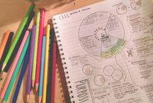 Science | K-8