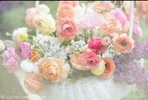 Flowers <3 / #Beautiful #flowers #and #arrangements