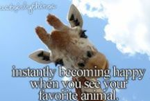 :) Just Girly Things <3 / by Brittany Schoonover