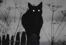 Dark Art / Immagini misteriose e terrificanti.