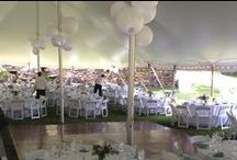 Tent Weddings   Blue Heron Catering / Tent weddings and celebrations catered by Blue Heron Restaurant & Catering.