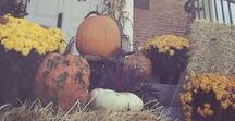 Inspiration: Fall / Inspiration for Fall weddings.