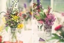 Kwiaty: polne