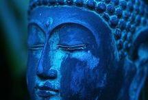 Buddha / by Nick Sparrow