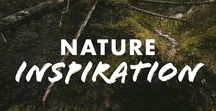 Nature Inspiration / When seeking inspiration, turn to nature.  Chacos.com