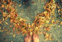 """autumn leaves / """"Just like queens, the leaves move gently as their shadows obey with natural synchronism"""""""