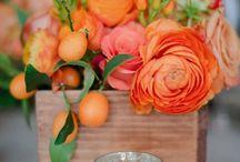 Flower Arrangements / by Claudia
