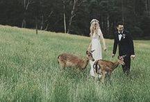 O.H Wedding - Ash & Christy Mannerheim / Oscar Hunt Tailors - Ash Mannerheim Wedding. www.oscarhunt.com.au