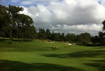 Castle Hill Country Club