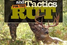 Bowhunting Tips / Check out these useful tips for your next bowhunting adventure.