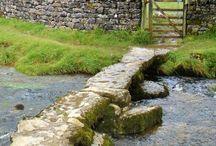 A Walk Down an English Country Lane