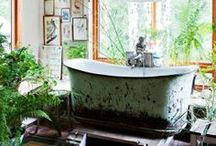 Project Bathroom / by Niky Hughes