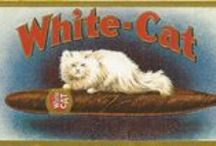 Cats / Original antique label art work with cats!