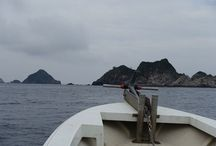 2015/08/30甑島釣行 / 2015/08/30