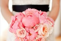 :: Pink Weddings :: / Pink  Blush  Candy pink  Powder pink  Pale pink  Ceremony  Tablescapes  Ideas  Wedding  Dresses  Jewelry  Hair  Palette  Flowers  Favors  Cakes