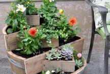 Garden Inspiration ♧♣ / ispirazioni di #fiori e #giardini #flower and #garden