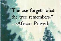 Beautiful wisdom