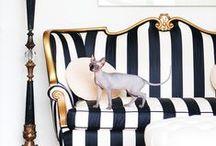 :: Stripes :: / Interior design  Decor  Styling  Black  White  Stripes  Pattern