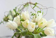 FLOWER POETS