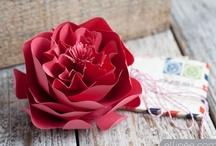 Crafts / Cute, crafty ideas & DIYs / by Susanna B