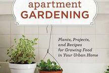 Garden for Apartments / garden for apartments