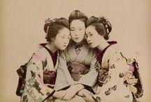 Japanese albumen