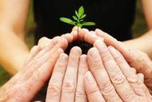 Green Footprints / >> Replacing carbon footprints with GREEN footprints! <<