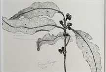 Botanical Pen & Ink Drawings / Nature illustrations. Botanical art. Black and white pen drawings. Watercolour, pen and ink paintings. Original artworks filled with zen and mindfulness. I call these 'Meditative Studies'. You might call them still life, flower art, garden art or home decor.