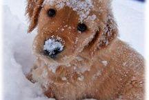 Awww cute!