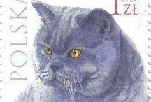 (School) Postzegels / Postzegels