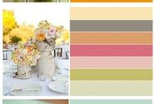 Colour Palletes to Inspire