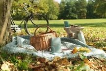 Picnics / Picnic ideas and locations / by Haven Holidays