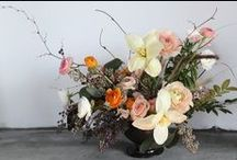 Floral FW 2014 / A selection of seasonal arrangements from Putnam & Putnam for Fall Winter 2014 |  | www.putnamflowers.com | @putnamflowers