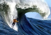 Waves-Vagues