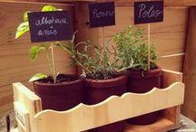 Noctiluca / Diseños para integrar vida verde a tu hogar! Huertos, jardineras, set de plantas, maceteros y mucho más!   Ofrecemos también asesorías de decoración, paisajismo y diseño de huertos.