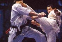 武道・格闘技 Martial arts