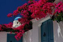 Grèce / by Macrina 2