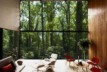 Architecture | windows