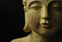 Dalai Lama and Buddhism / Buddhism
