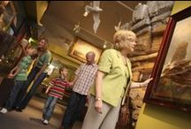 South Shields Museum & Art Gallery  / Uncover the rich history of the area at South Shields Museum & Art Gallery, where the story of South Tyneside is told through sensational displays, hands on exhibits and stunning art.