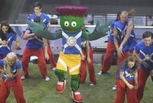 SPORTS MASCOTS: International Tournaments / Sports Mascots manufactured by Rainbow Productions for International Tournaments.