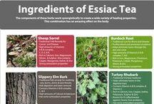 Essiac Tea / Essiac Tea and it's many health benefits.