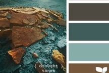 Color Palettes / by Stacey Howell